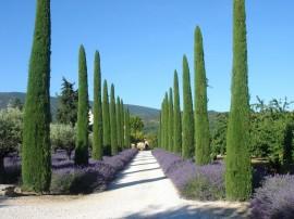 Le Lubéron : la perle de la Provence