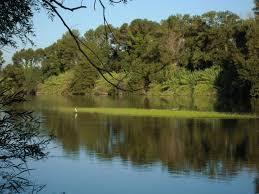 reserve-naturelle-du-mas-larrieu
